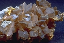 Orpiment8510