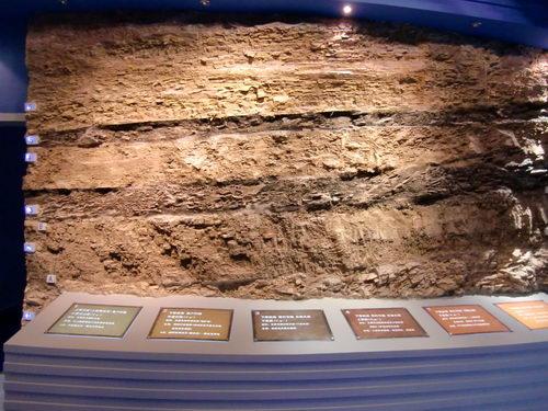 澄江动物化石群给我们提供了寒武纪大爆发时期最完整